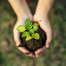 09 sustentabilidade 2